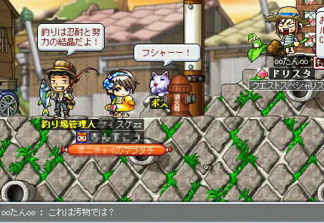 MapleStory 2009-07-26 21-18-10-85.png