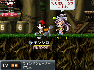 MapleStory 2009-08-08 16-49-47-05.png