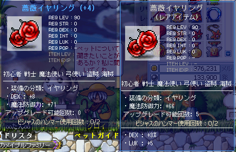 MapleStory 2010-10-03 13-32-53-62.png