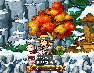 MapleStory 2009-08-28 21-56-03-34.png