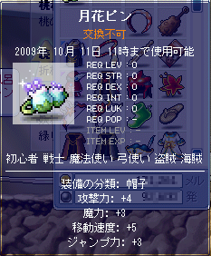 MapleStory 2009-10-02 21-40-58-07.png