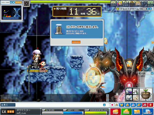 MapleStory 2010-03-06 09-53-42-46.png