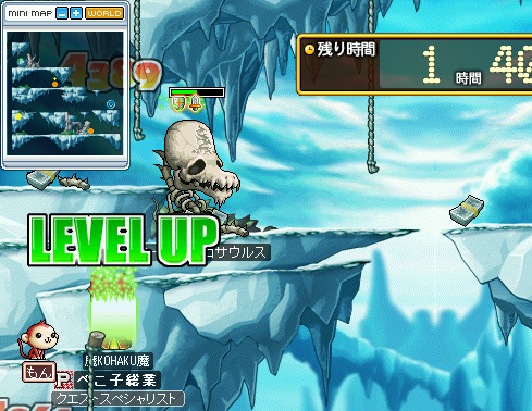 MapleStory 2010-07-04 14-17-40-60.png
